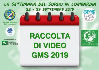 raccolta video